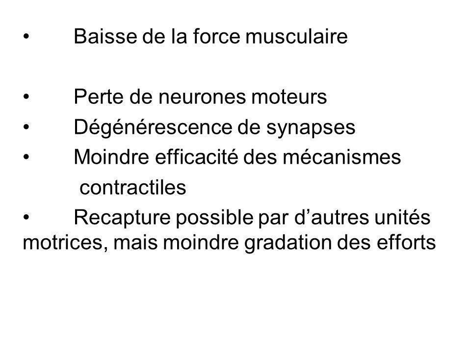 Baisse de la force musculaire Perte de neurones moteurs Dégénérescence de synapses Moindre efficacité des mécanismes contractiles Recapture possible par dautres unités motrices, mais moindre gradation des efforts