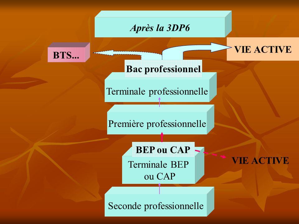Après la 3DP6 Terminale BEP ou CAP VIE ACTIVE Seconde professionnelle BEP ou CAP Terminale professionnelle Première professionnelle BTS... VIE ACTIVE