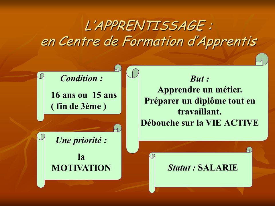LAPPRENTISSAGE : en Centre de Formation dApprentis Condition : 16 ans ou 15 ans ( fin de 3ème ) Statut : SALARIE But : Apprendre un métier. Préparer u