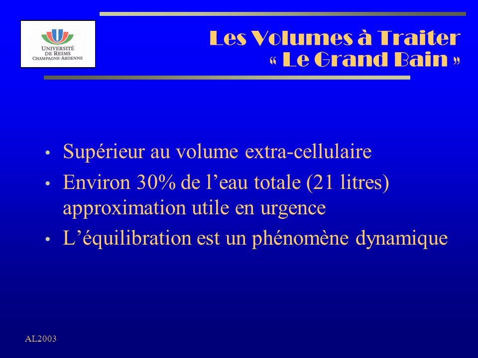 AL2003 Les Volumes à Traiter « Le Grand Bain » Supérieur au volume extra-cellulaire Environ 30% de leau totale (21 litres) approximation utile en urge