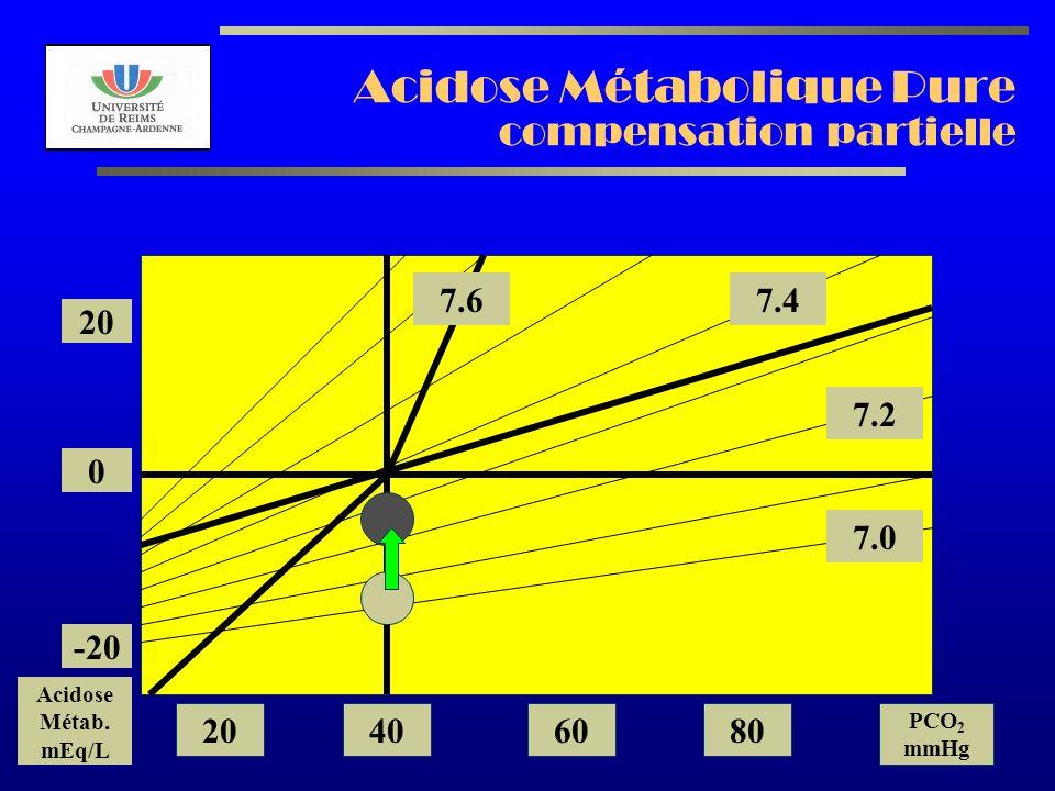 AL2003 Acidose Métabolique Pure compensation partielle 7.2 7.0 7.47.6 20 0 -20 Acidose Métab. mEq/L 20406080 PCO 2 mmHg