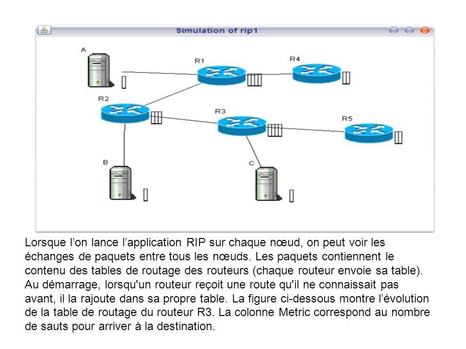 Lorsque lon lance lapplication RIP sur chaque nœud, on peut voir les échanges de paquets entre tous les nœuds. Les paquets contiennent le contenu des