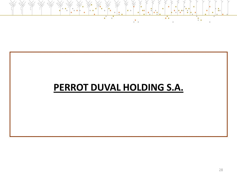 PERROT DUVAL HOLDING S.A. 28