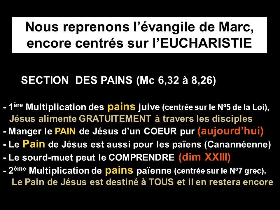 SECTION DES PAINS (Mc 6,32 à 8,26) - 1 ère Multiplication des pains juive (centrée sur le Nº5 de la Loi), Jésus alimente GRATUITEMENT à travers les disciples - Manger le PAIN de Jésus dun COEUR pur (aujourdhui) - Le Pain de Jésus est aussi pour les païens (Canannéenne) - Le sourd-muet peut le COMPRENDRE (dim XXIII) - 2 ème Multiplication de pains païenne (centrée sur le Nº7 grec).