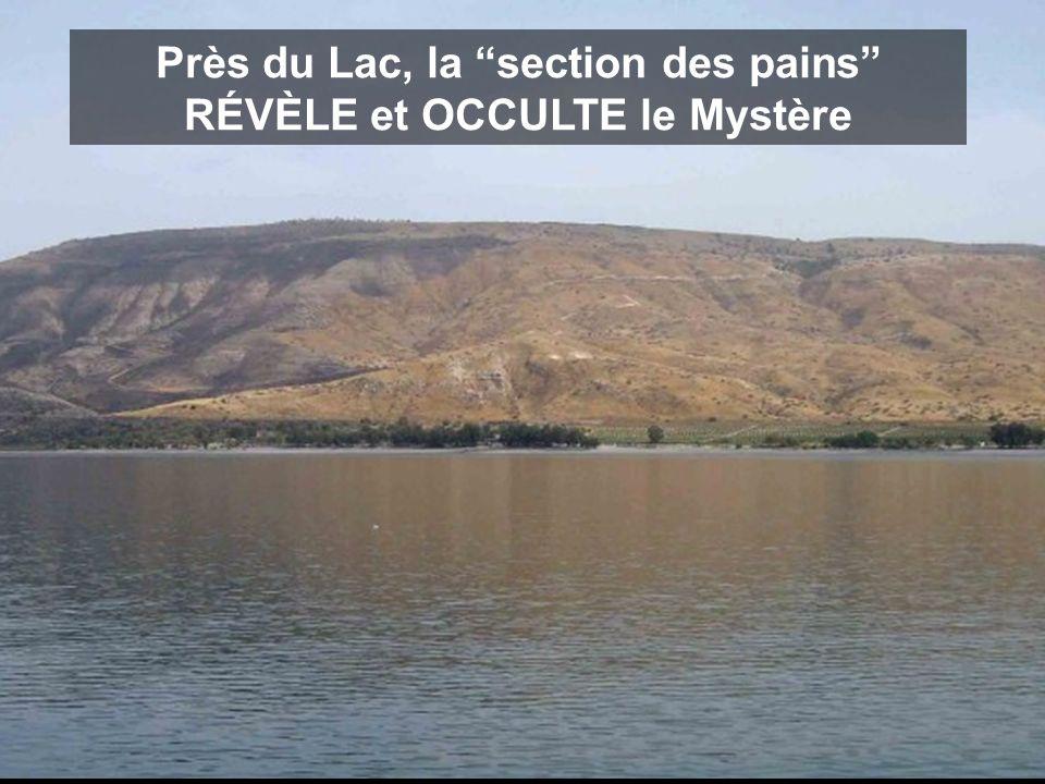 Près du Lac, la section des pains RÉVÈLE et OCCULTE le Mystère