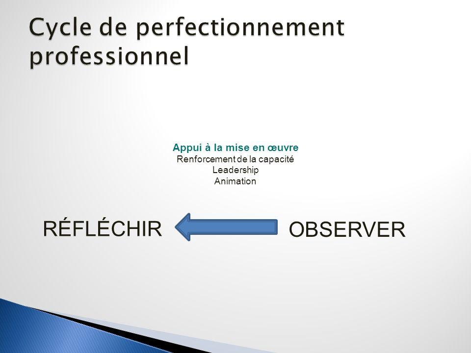 OBSERVER RÉFLÉCHIR Appui à la mise en œuvre Renforcement de la capacité Leadership Animation