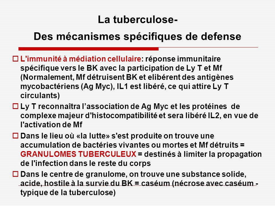 La tuberculose- Des mécanismes spécifiques de defense L'immunité à médiation cellulaire: réponse immunitaire spécifique vers le BK avec la participati
