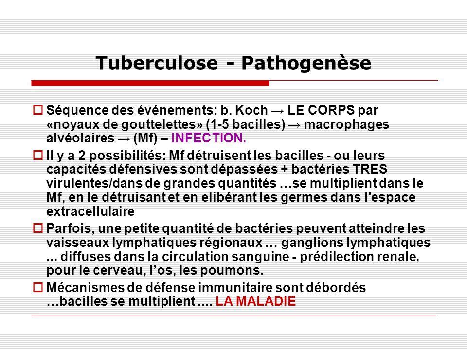 Tuberculose - Pathogénie Des mécanismes de défense NON SPÉCIFIQUES: - Dichotomie bronchique - Épithélium muco-ciliaire - Les macrophages alvéolaires qui ingèrent des particules infectieuses <5μ - IgA sécrétoire dans les glandes sous- muqueuses des voies respiratoires SPÉCIFIQUES - L immunité à médiation cellulaire - Hypersensibilité de type retardé