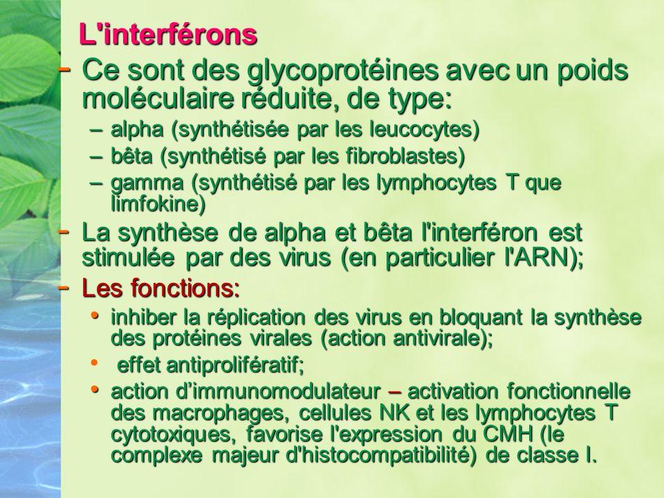 L'interférons L'interférons - Ce sont des glycoprotéines avec un poids moléculaireréduite, de type: - Ce sont des glycoprotéines avec un poids molécul