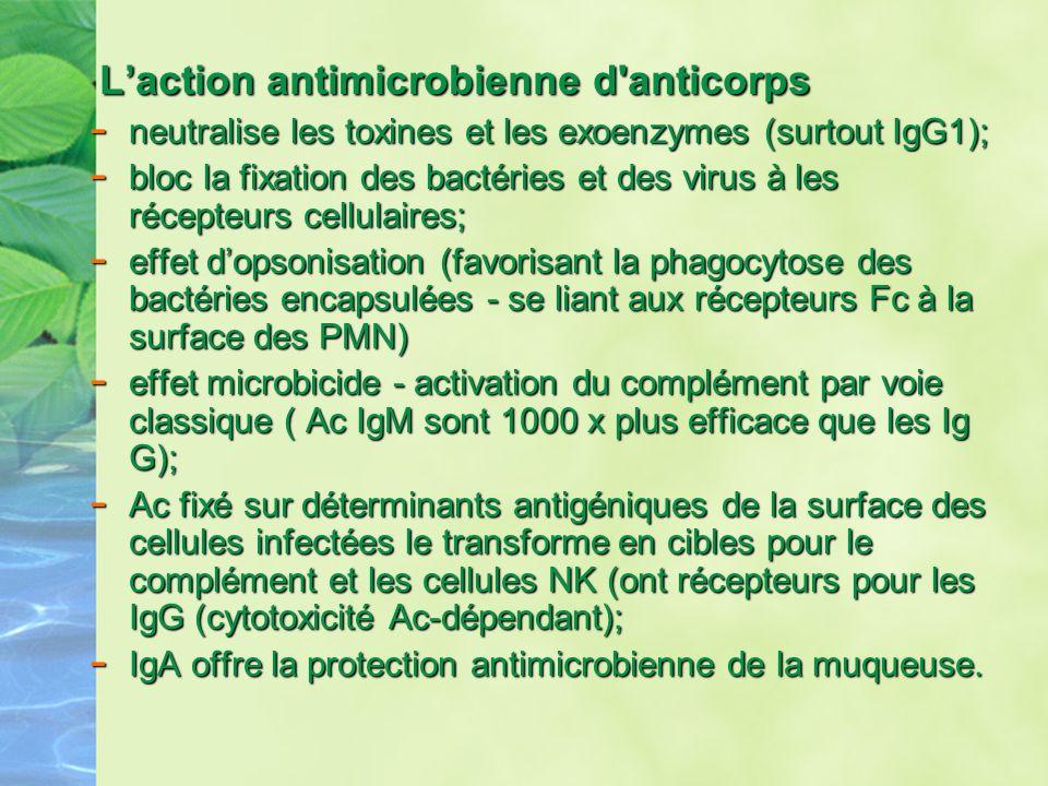 Laction antimicrobienne d'anticorps Laction antimicrobienne d'anticorps - neutralise les toxines et les exoenzymes (surtout IgG1); - bloc la fixation