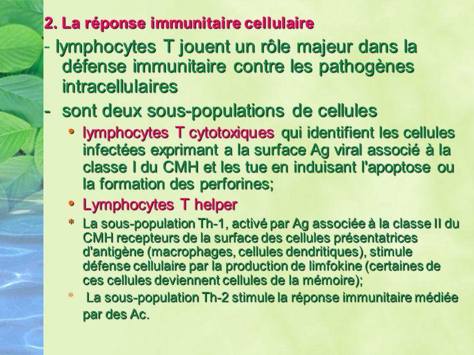 2. La réponse immunitaire cellulaire lymphocytes T jouent un rôle majeur dans la défense immunitaire contre les pathogènes intracellulaires - lymphocy