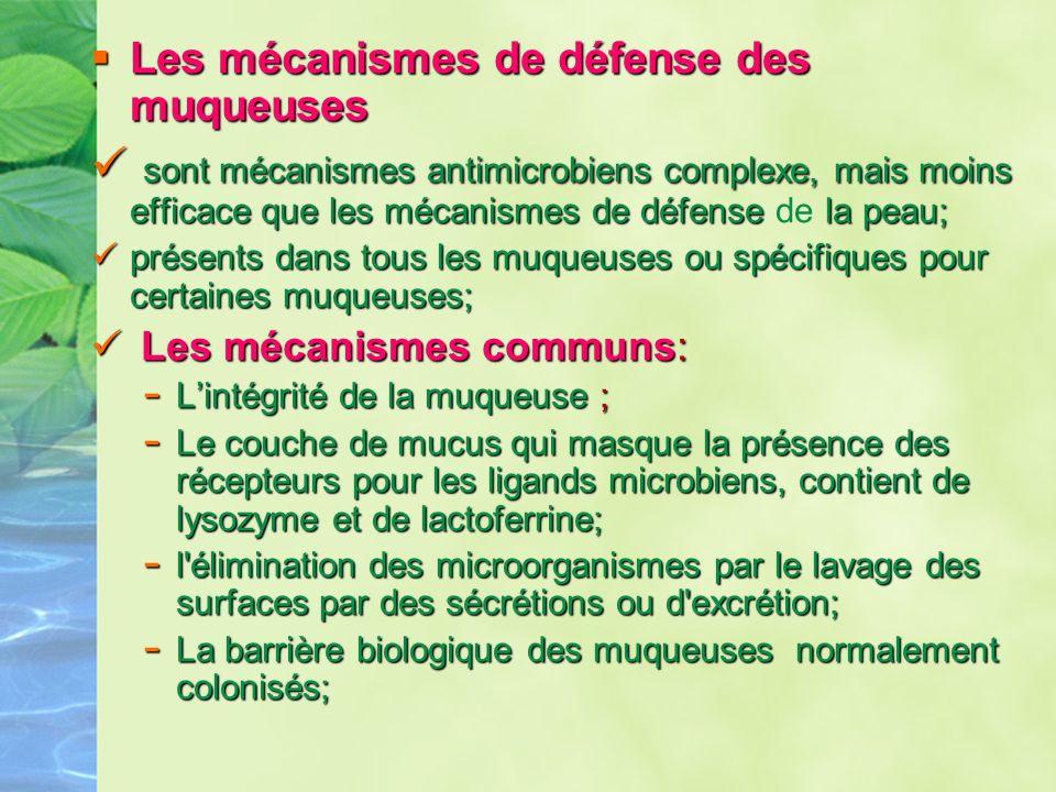 Les mécanismes de défense des muqueuses Les mécanismes de défense des muqueuses sont mécanismes antimicrobiens complexe, mais moins efficace que les m