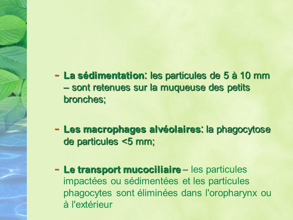 - La sédimentation : les particules de 5 à 10 mm – sont retenues sur la muqueuse des petits bronches; - Les macrophages alvéolaires : la phagocytose d