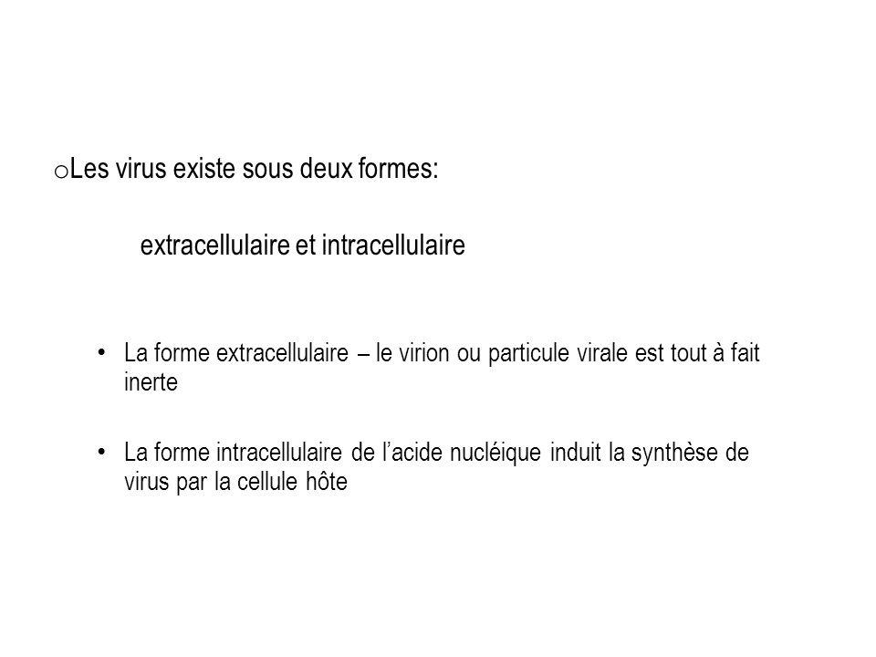 o Les virus existe sous deux formes: extracellulaire et intracellulaire La forme extracellulaire – le virion ou particule virale est tout à fait inert