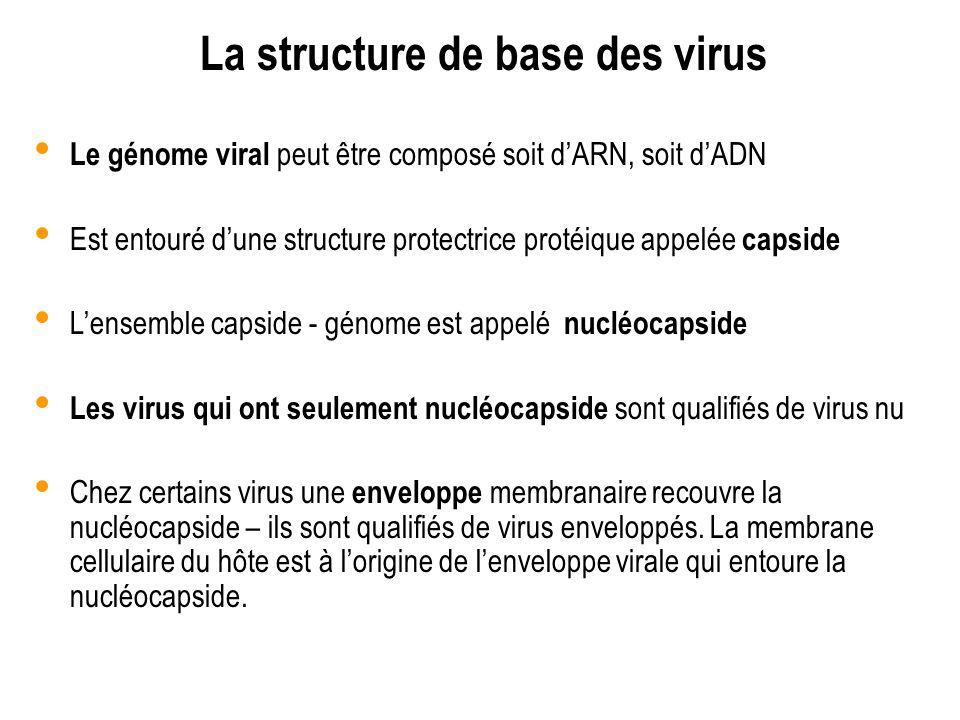 La structure de base des virus Le génome viral peut être composé soit dARN, soit dADN Est entouré dune structure protectrice protéique appelée capside
