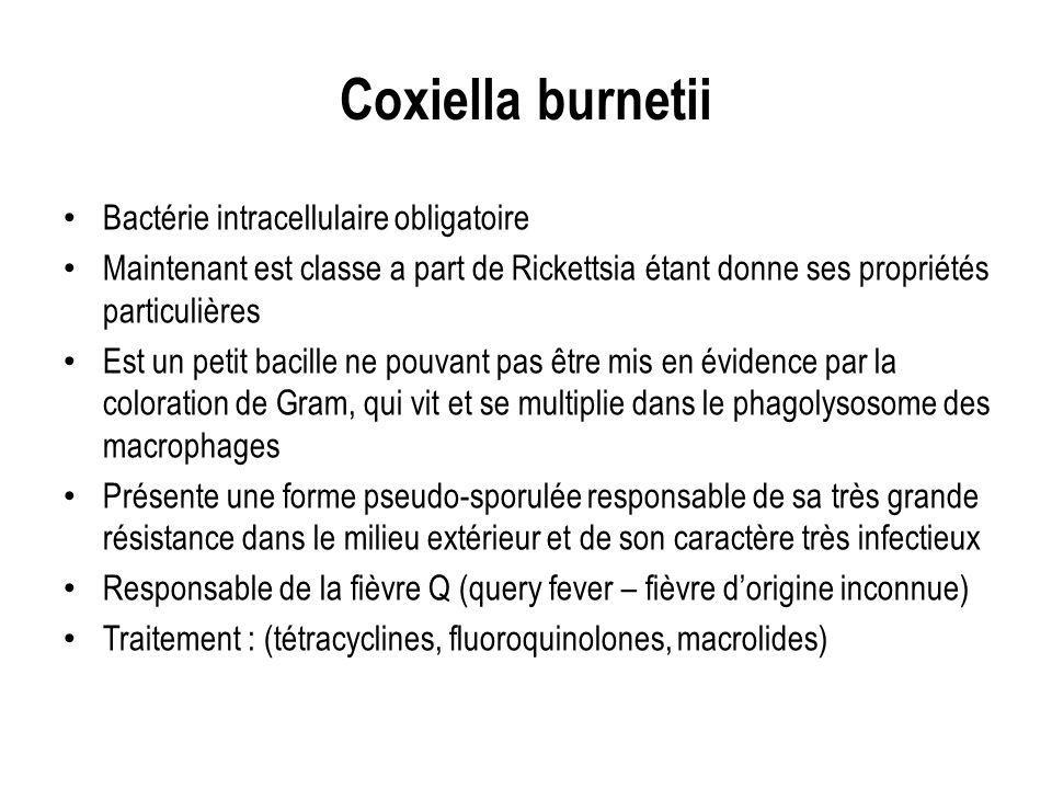 Coxiella burnetii Bactérie intracellulaire obligatoire Maintenant est classe a part de Rickettsia étant donne ses propriétés particulières Est un peti