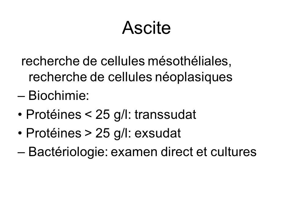 Ascite recherche de cellules mésothéliales, recherche de cellules néoplasiques – Biochimie: Protéines < 25 g/l: transsudat Protéines > 25 g/l: exsudat