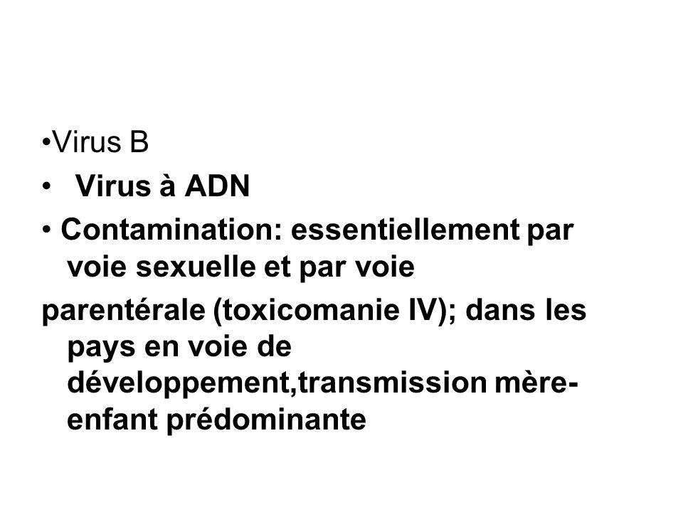 Virus B Virus à ADN Contamination: essentiellement par voie sexuelle et par voie parentérale (toxicomanie IV); dans les pays en voie de développement,