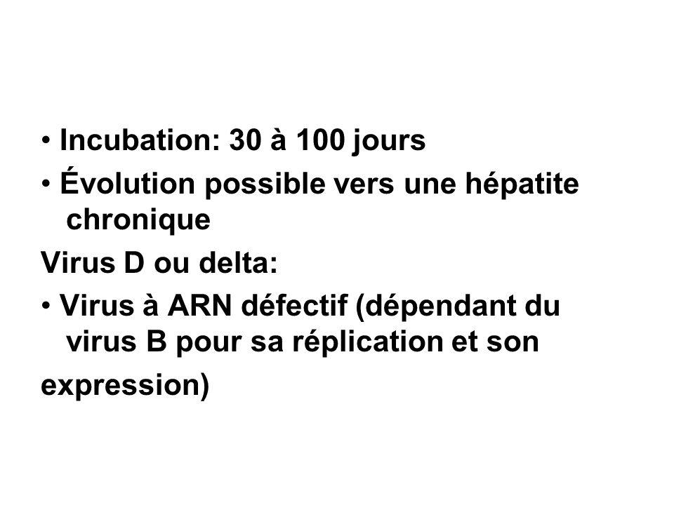 Incubation: 30 à 100 jours Évolution possible vers une hépatite chronique Virus D ou delta: Virus à ARN défectif (dépendant du virus B pour sa réplica