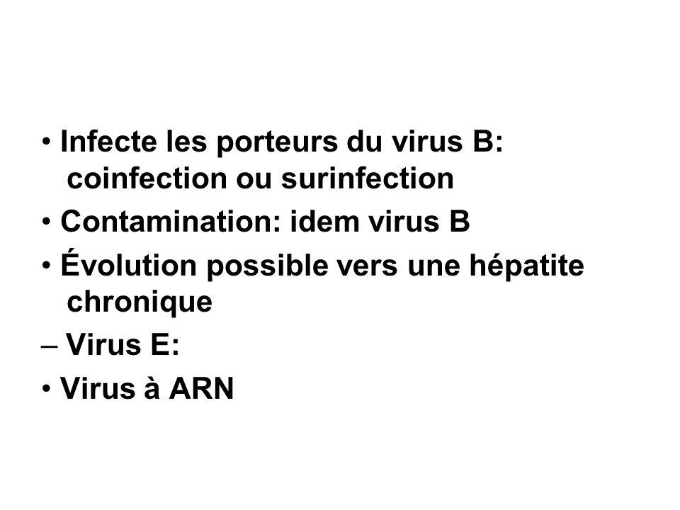 Infecte les porteurs du virus B: coinfection ou surinfection Contamination: idem virus B Évolution possible vers une hépatite chronique – Virus E: Vir