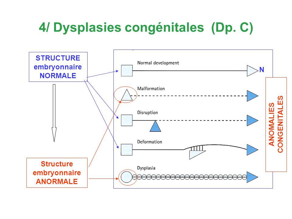 STRUCTURE embryonnaire NORMALE Structure embryonnaire ANORMALE N ANOMALIES CONGENITALES ANOMALIILE CONGENITALE - sinteză 4/ Dysplasies congénitales (D