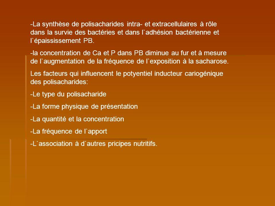-La synthèse de polisacharides intra- et extracellulaires à rôle dans la survie des bactéries et dans l`adhésion bactérienne et l`épaississement PB. -