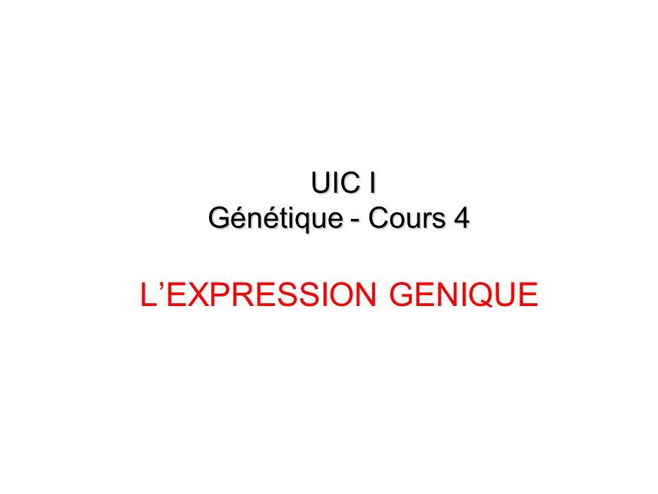 I – Lexpression Génique Généralités Deux processus correlés fonctionnels : la transcription et la traduction Nécessitent : –un système de transfert de linformation génétique du noyau vers le cytoplasme –un code génétique.