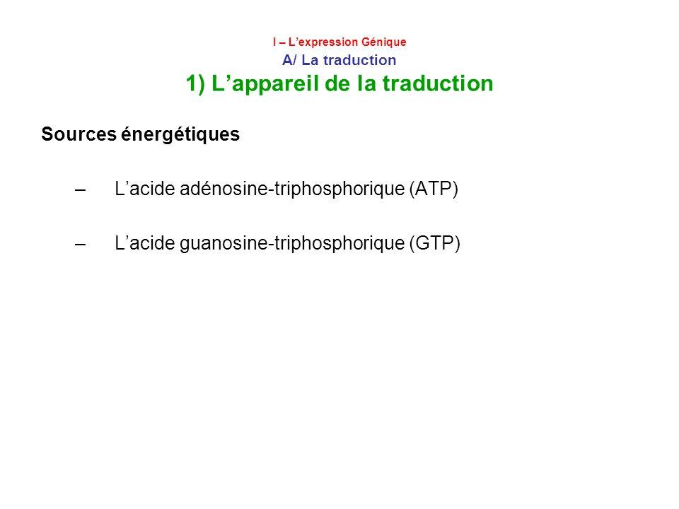 I – Lexpression Génique A/ La traduction 1) Lappareil de la traduction Sources énergétiques –Lacide adénosine-triphosphorique (ATP) –Lacide guanosine-