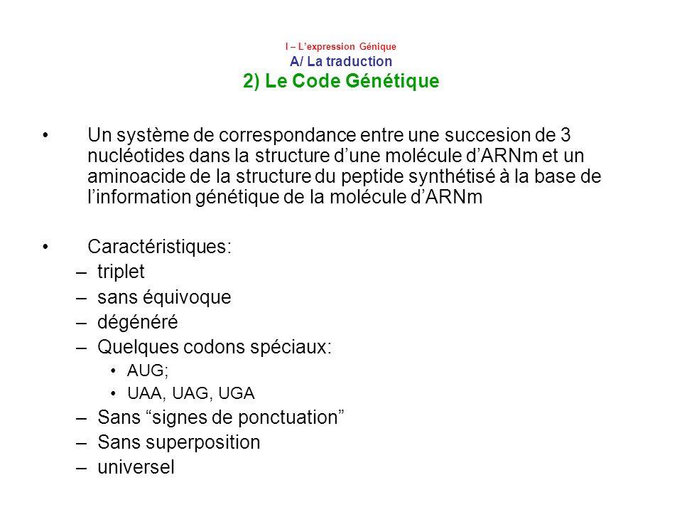 I – Lexpression Génique A/ La traduction 2) Le Code Génétique Un système de correspondance entre une succesion de 3 nucléotides dans la structure dune