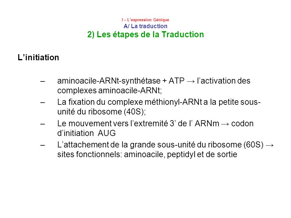 I – Lexpression Génique A/ La traduction 2) Les étapes de la Traduction Linitiation –aminoacile-ARNt-synthétase + ATP lactivation des complexes aminoa