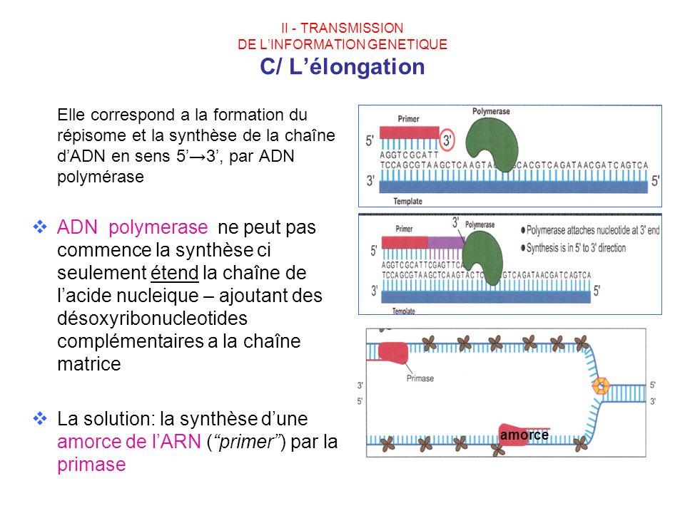 II - TRANSMISSION DE LINFORMATION GENETIQUE C/ Lélongation Elle correspond a la formation du répisome et la synthèse de la chaîne dADN en sens 53, par