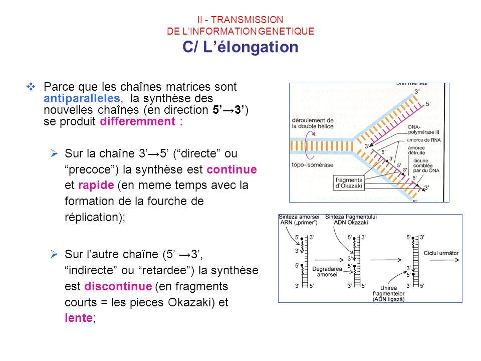 II - TRANSMISSION DE LINFORMATION GENETIQUE C/ Lélongation Parce que les chaînes matrices sont antiparalleles, la synthèse des nouvelles chaînes (en d