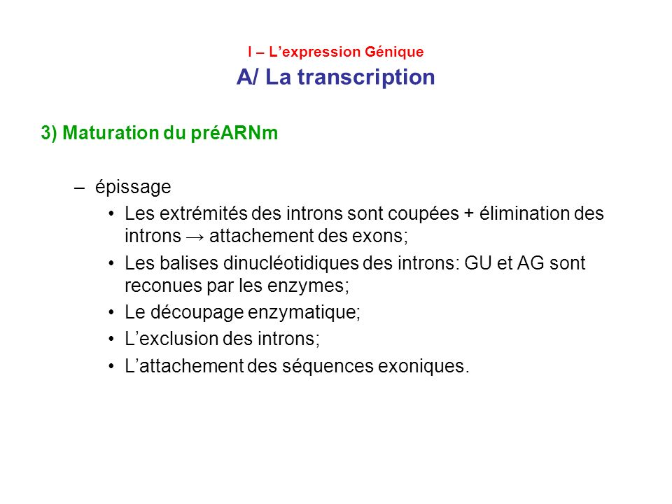UNITE TRANSCRIPTIONELLE GT--- ----------------AG GT---------------AG Promotor Exon 1Exon 2Exon 3 Intron 1Intron 2 TRANSCRIPŢIE GU---------------------AG GU--------------AG Exon 1Exon 2Exon 3 COUPER AU NIVEAU GU---------------------AG GU --------------AG Découpage des introns EPISSAGE GENE TRANSCRIT PRIMAIRE ARN MATURE La maturation du preARNm
