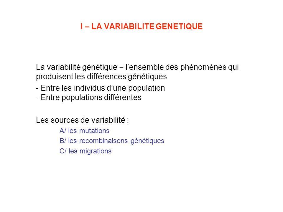 I – LA VARIABILITE GENETIQUE La variabilité génétique = lensemble des phénomènes qui produisent les différences génétiques - Entre les individus dune