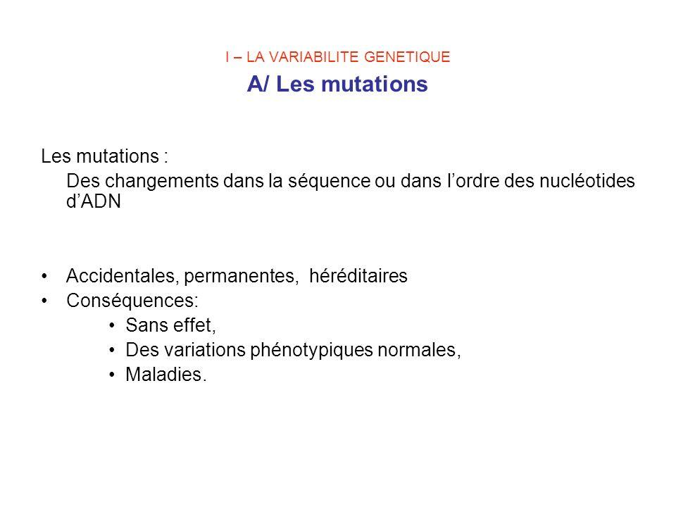I – LA VARIABILITE GENETIQUE A/ Les mutations Les mutations : Des changements dans la séquence ou dans lordre des nucléotides dADN Accidentales, perma