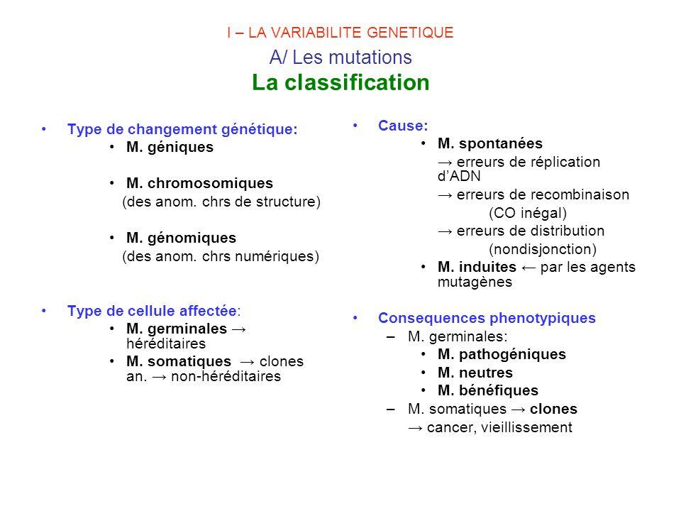 I – LA VARIABILITE GENETIQUE A/ Les mutations La classification Type de changement génétique: M. géniques M. chromosomiques (des anom. chrs de structu
