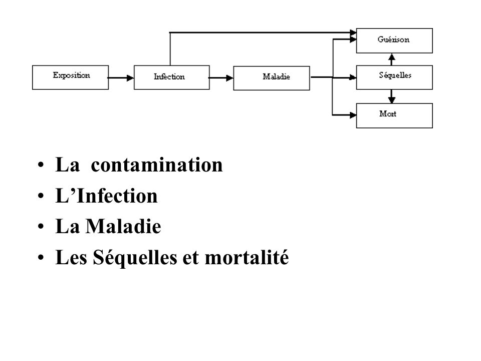 La contamination LInfection La Maladie Les Séquelles et mortalité