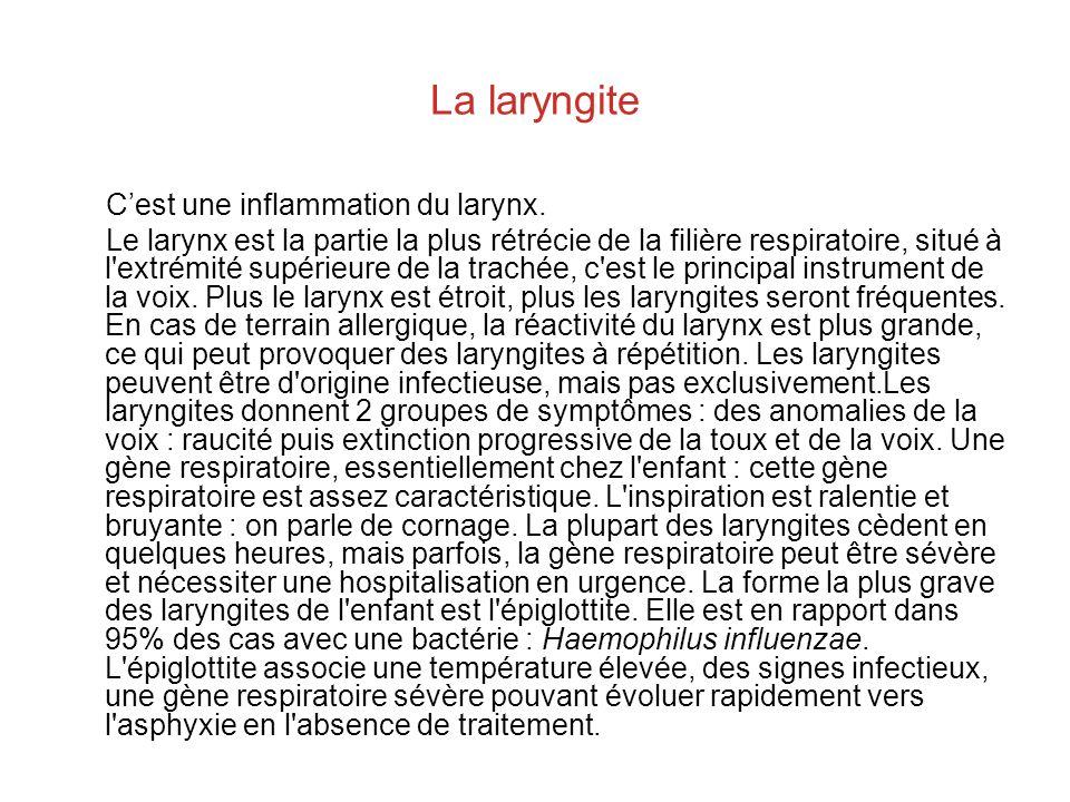 La laryngite Cest une inflammation du larynx. Le larynx est la partie la plus rétrécie de la filière respiratoire, situé à l'extrémité supérieure de l
