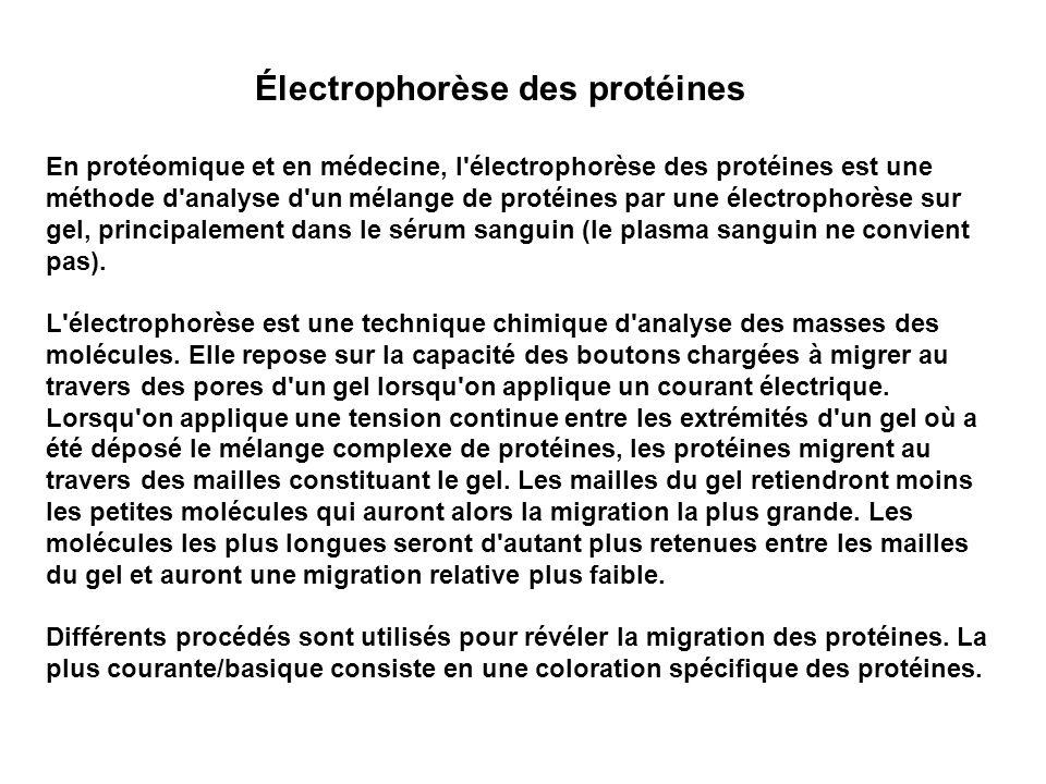 Électrophorèse des protéines En protéomique et en médecine, l'électrophorèse des protéines est une méthode d'analyse d'un mélange de protéines par une