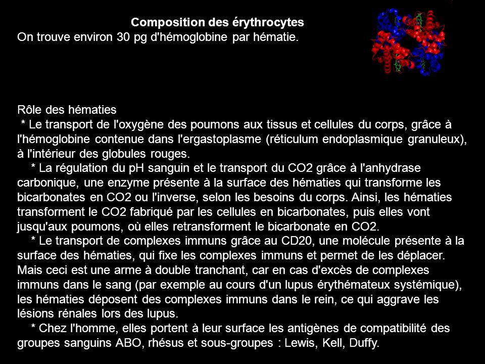 Composition des érythrocytes On trouve environ 30 pg d'hémoglobine par hématie. Rôle des hématies * Le transport de l'oxygène des poumons aux tissus e