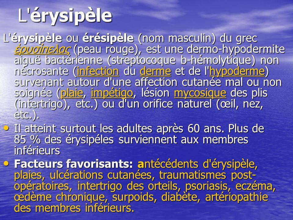 L'érysipèle L'érysipèle ou érésipèle (nom masculin) du grec ρυσίπελας (peau rouge), est une dermo-hypodermite aiguë bactérienne (streptocoque b-hémoly