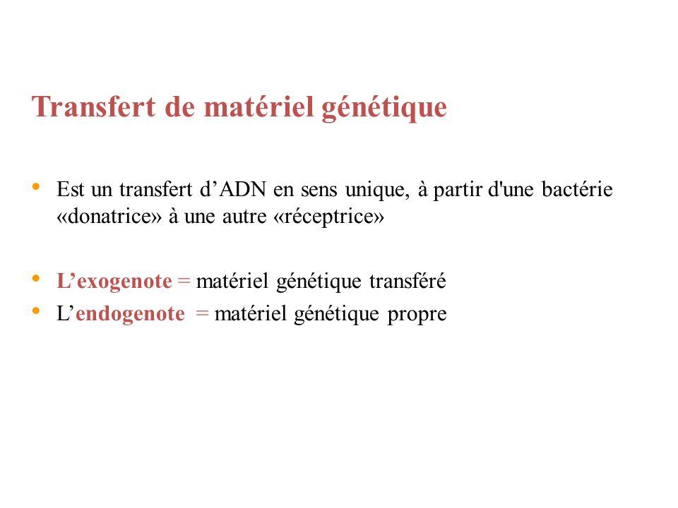 Transfert de matériel génétique Est un transfert dADN en sens unique, à partir d'une bactérie «donatrice» à une autre «réceptrice» Lexogenote = matéri