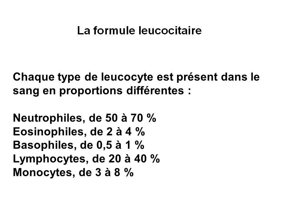 Chaque type de leucocyte est présent dans le sang en proportions différentes : Neutrophiles, de 50 à 70 % Eosinophiles, de 2 à 4 % Basophiles, de 0,5