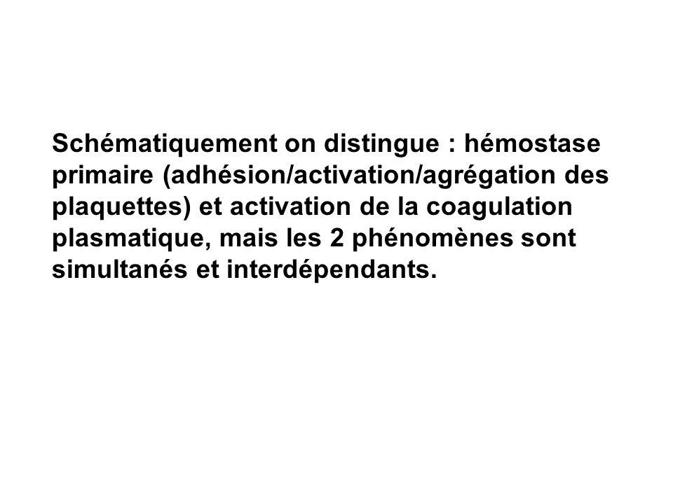 Schématiquement on distingue : hémostase primaire (adhésion/activation/agrégation des plaquettes) et activation de la coagulation plasmatique, mais le