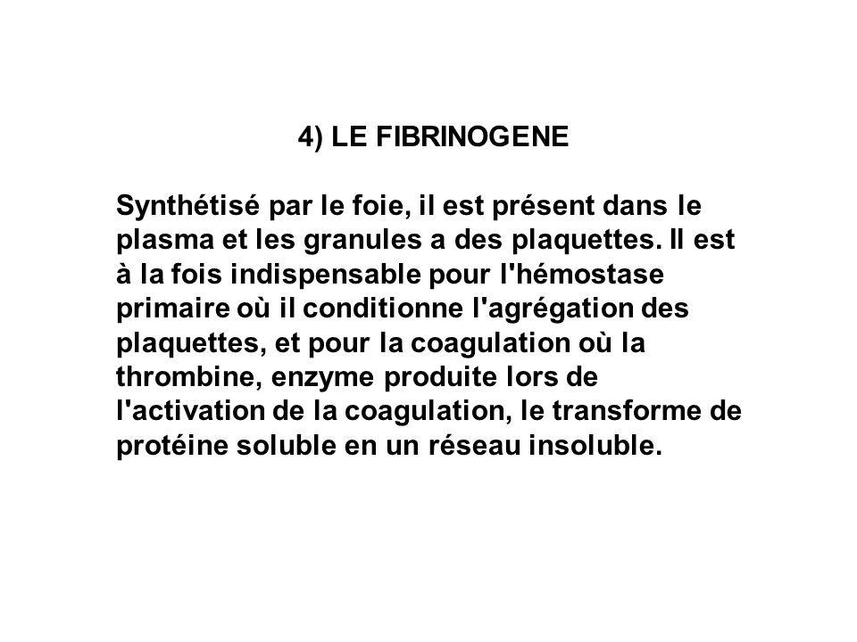 4) LE FIBRINOGENE Synthétisé par le foie, il est présent dans le plasma et les granules a des plaquettes. Il est à la fois indispensable pour l'hémost