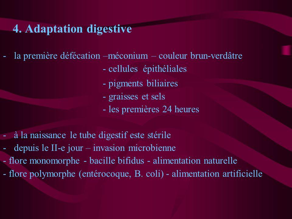 4. Adaptation digestive -la première défécation –méconium – couleur brun-verdâtre - cellules épithéliales - pigments biliaires - graisses et sels - le
