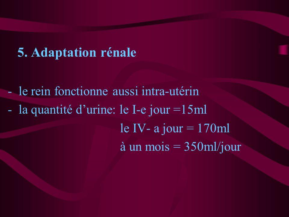 5. Adaptation rénale -le rein fonctionne aussi intra-utérin -la quantité durine: le I-e jour =15ml le IV- a jour = 170ml à un mois = 350ml/jour