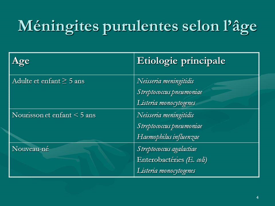 4 Méningites purulentes selon lâge Age Etiologie principale Adulte et enfant 5 ans Neisseria meningitidis Streptococcus pneumoniae Listeria monocytoge