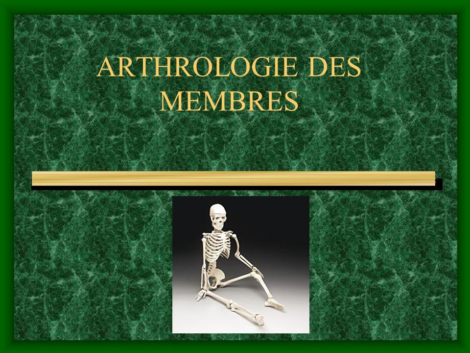 CLASSIFICATION DES DIARTHROSES Apres la forme des surfaces articulaires Apres la forme des surfaces articulaires ginglyme – art.
