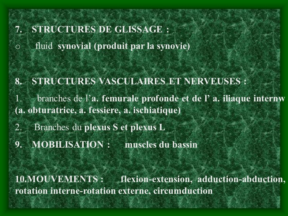 7. STRUCTURES DE GLISSAGE : o fluid synovial (produit par la synovie) 8. STRUCTURES VASCULAIRES ET NERVEUSES : 1. branches de la. femurale profonde et